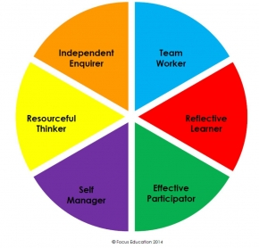 Curriculum Pie Chart